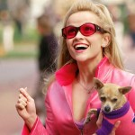 16 Times Girls In College Are Just Like Elle Woods